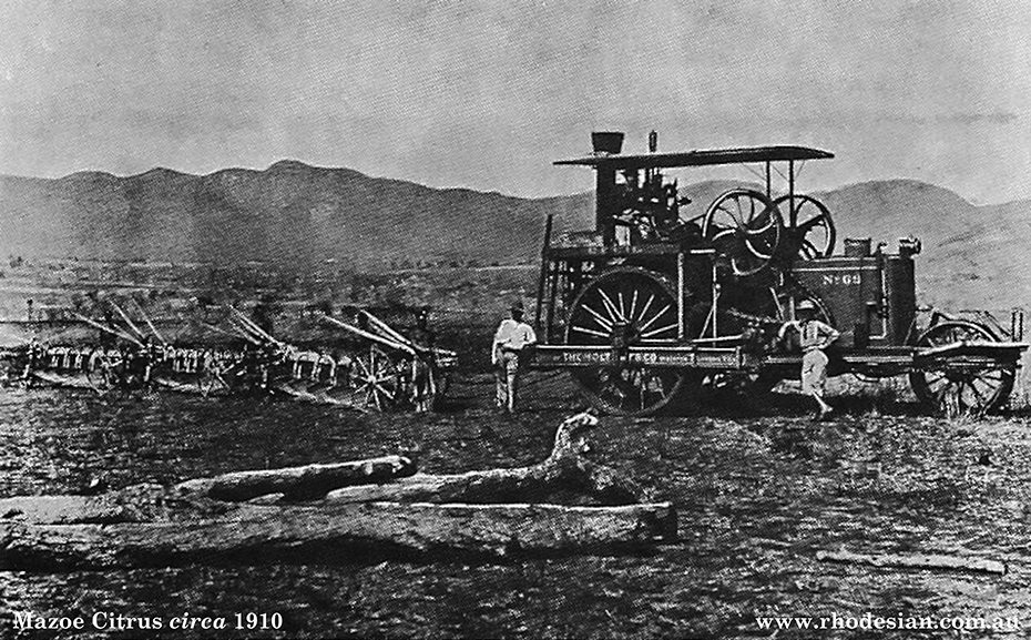 Photo of land preparation at citrus estate at Mazoe in 1910