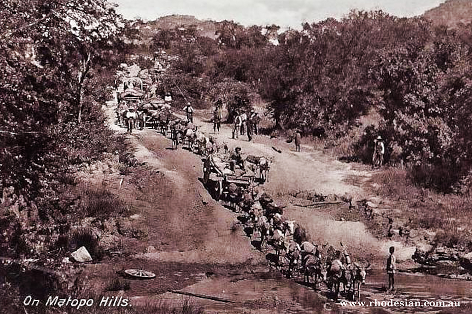 Photo of Mule transport in Matopos Hills down lond decline